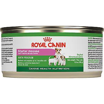 Royal Canin Starter Mousse For Mother And Baby Dog Canned Dog Food, 195 X 3can