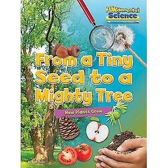 Fundamental Science Key Stage 1: From a Tiny Seed to a Mighty Tree: How Plants Grow 2016 (Fundamental Science...