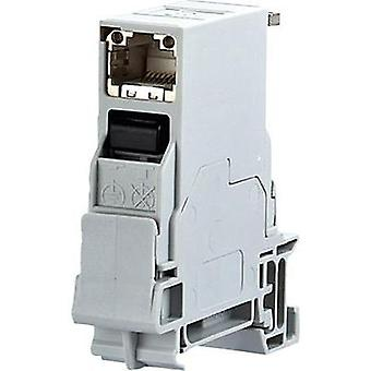 Network outlet DIN rail CAT 6 Metz Connect Light grey