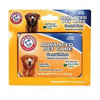 Arm & Hammer Mint Tablets (Dogs , Grooming & Wellbeing , Dental Hygiene)