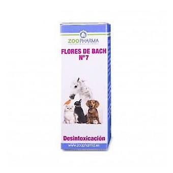 ZooPharma Detoxification 10 Gr. (Cani , Training e addestramento , Comportamento)