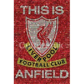 Liverpool Mosaic Poster Print (36 X 24)