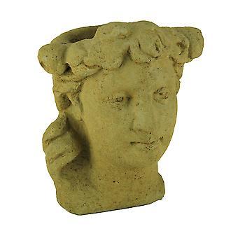 Designer Stone Harvest Yellow Classic Lady Head Concrete Planter