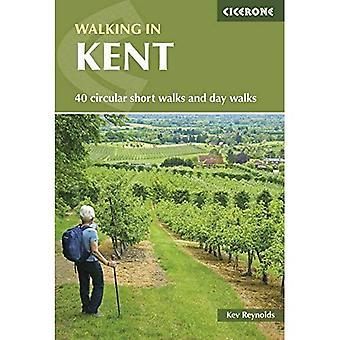 Walking in Kent: 40 circular short walks and day walks