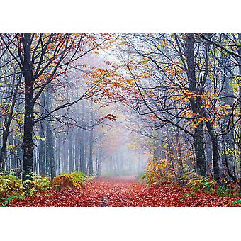 Wallpaper Mural Foggy Autumn Forest Road