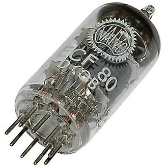 Vacuum tube ECF 80 = 6 BL 8 100 V, 170 V 14 mA, 10 mA Number of pins: 9 Base: Noval Content 1 pc(s)