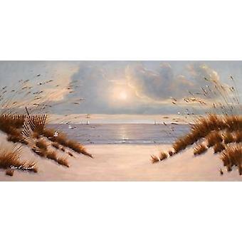 Coastal Dunes Poster Print by  Diane Romanello