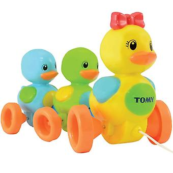 Charlatan Tomy le long des canards