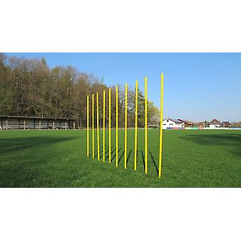 Slalom poles - 10 set with carrying bag