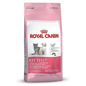 Royal Canin Cat Kitten aged 4 to 12 months old Food 36 Dry Mix 400 g