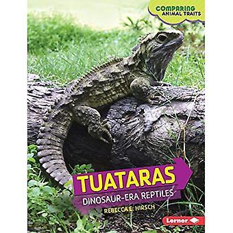 Tuataras: Dinosaur-Era Reptiles (Comparing Animal Traits)