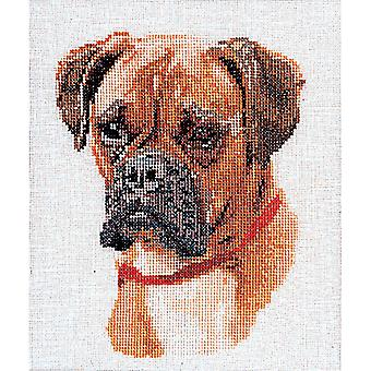 Boxer On Aida Counted Cross Stitch Kit 8 3 4