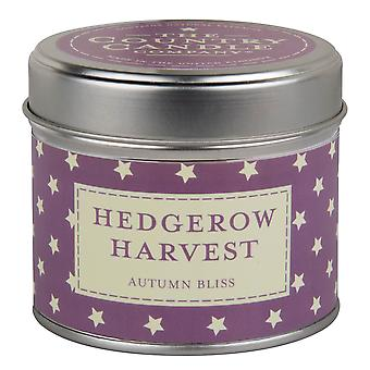 Superstars Collection Candle in a Tin - Hedgerow Harvest