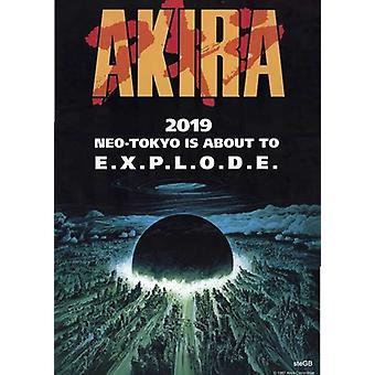 Akira Movie Poster (11 x 17)