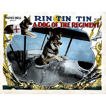 A Dog Of The Regiment Rin Tin Tin 1927 Movie Poster Masterprint