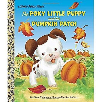 Poky Little Puppy and the Pumpkin Patch (Little Golden Book)