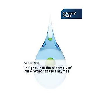 Insights into the assembly of NiFe hydrogenase enzymes by Marti Gergely