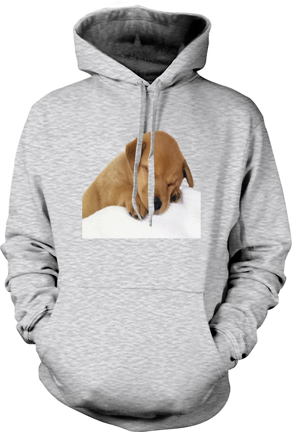 Mens Hoodie - Cute Sleeping Puppy Dog