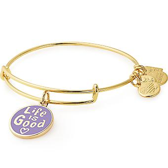 Alex and Ani Life is Good Charm Bangle - CBD18LIG01SG