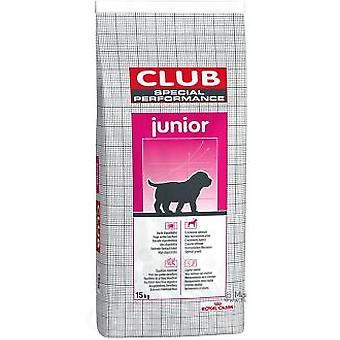 Royal Canin Club Special Performance Junior (Dogs , Dog Food , Dry Food)