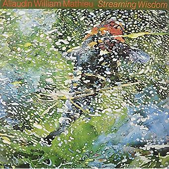 Alludin William Mathieu - Streaming Wisdom [Vinyl] USA import