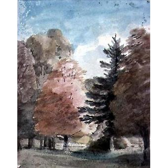 Study of Trees in a Park (watercolour) by.. - Postcard (Pack of 8) - Art247 Highest Quality