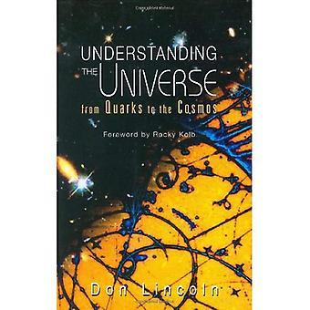 Comprensione dell'universo: dai quark al cosmo