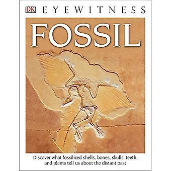 DK Eyewitness livres: Fossile (DK Eyewitness livres)