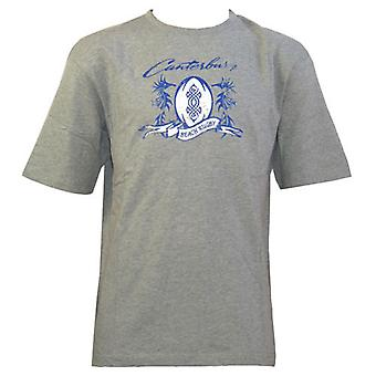 CCC beach rugby tattoo t-shirt junior [grey]