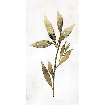 Gold botanische IV Poster Print von Asien Jensen (10 x 20)