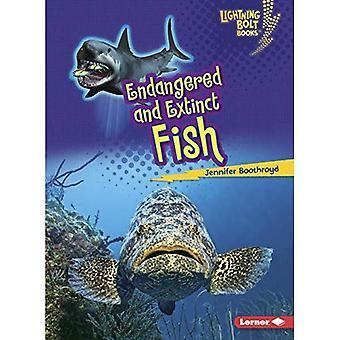 Utrotningshotade och utdöda fiskar (Lightning Bolt böcker djur i fara)