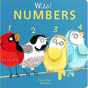 Numbers (Wild! Concepts) [Board book]