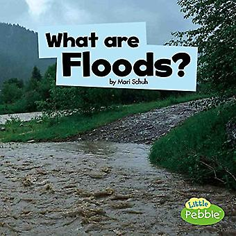 What Are Floods? (Wicked Weather)