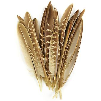 Pheasant Quill Feathers 18/Pkg-Natural 38192