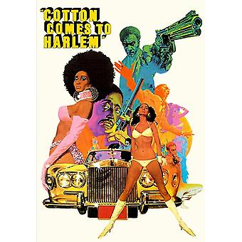 Cotton Comes to Harlem [DVD] USA import