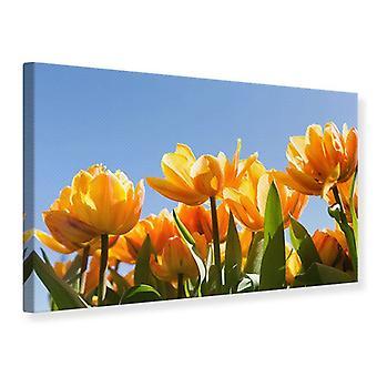 Lærred Print fabelagtig Tulips