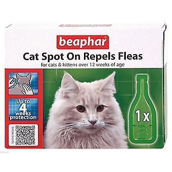 Beaphar kat plek op stoot vlooien voor katten en Kittens