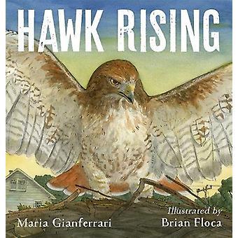 Hawk stiger av Maria Gianferrari - 9781626720961 bok