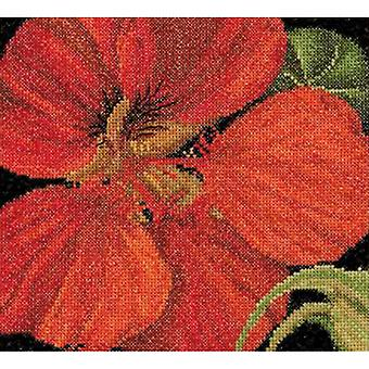 East Indian Cherry On Aida Counted Cross Stitch Kit-5.75