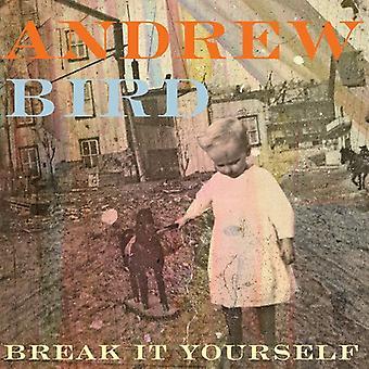 Andrew Bird - bryde det selv [CD] USA import