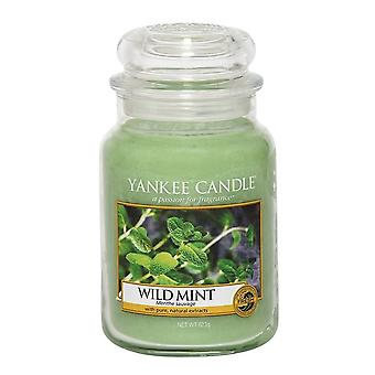 Yankee Candle Large Jar Candle Classic Wild Mint 623g