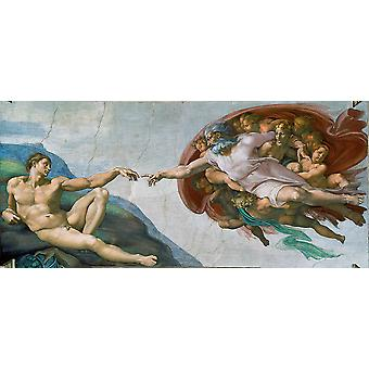 Michelangelo Buonarroti - The Creation of Adam Poster Print Giclee