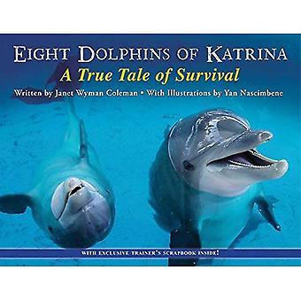 Acht Delfine von Katrina: eine wahre Geschichte des Überlebens