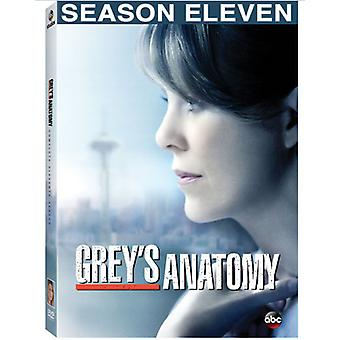 Grey's Anatomy: komplet elvte sæson [DVD] USA import