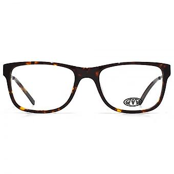 Animal Jones Oval Acetate Glasses In Tortoiseshell