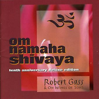 Robert Gass - Robert Gass: Vol. 1-Om Namaha Shivaya [CD] USA import