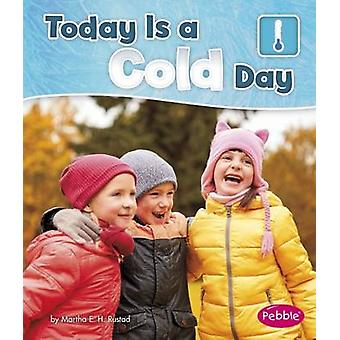 Today is a Cold Day by Martha E. H. Rustad - 9781474738774 Book