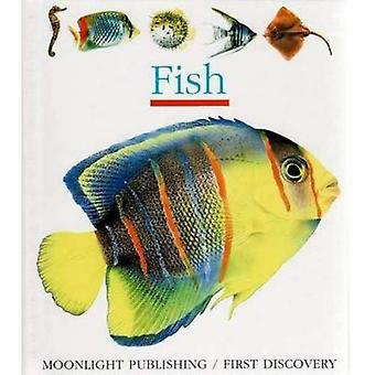 Fish (First Discovery)