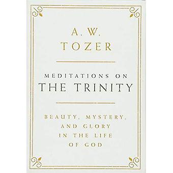 Méditations sur la Trinité: beauté, mystère et la gloire dans la vie de Dieu