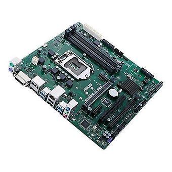 ASUS b250m-c Pro/c SM scheda Madre Micro ATX spcket LGA 1151